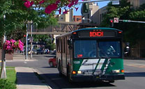 Transit Bus in Downtown