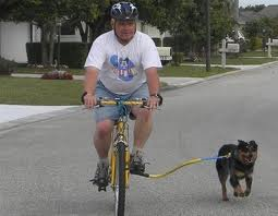 biking w dog.png